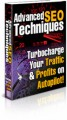 Advanced Seo Techniques PLR Ebook