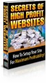 Secrets Of High Profit Websites PLR Ebook