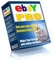 Ebay Pro MRR Ebook