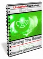 Taming The Beast - Cascading Style Sheets MRR Ebook