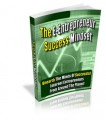 The E-Entrepreneur Success Mindset PLR Ebook