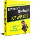 Internet Business For Newbies PLR Ebook