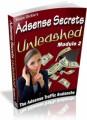 Adsense Secrets Unleashed Uncovering The Adsense Goldmine MRR Ebook