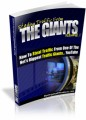 Stealing Traffic From The Giants V1 Mrr Ebook