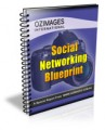 Social Networking Blueprint Give Away Rights Ebook