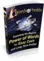 Words To Profit Mrr Ebook