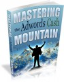 Mastering The Adwords Cash Mountain Mrr Ebook
