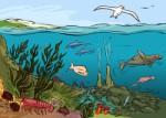Ecosystem Plr Articles