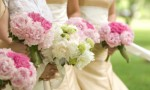 Wedding Planning Plr Articles