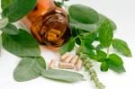 Homeopathy Plr Articles v2