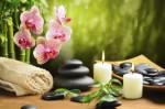 Natural Healing Plr Articles v2