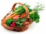 Vegetarianism Plr Articles v2