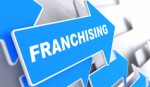 Franchise Opportunities Plr Articles