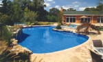 Swimming Pool Tubs Sauna Plr Articles