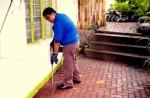Termites Control Plr Articles