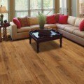 Laminate Flooring Plr Articles