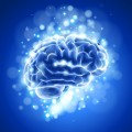 Brain Training Plr Articles