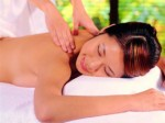 Massage Therapy Plr Articles v3
