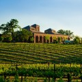Paso Robles Wineries Plr Articles