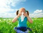 Allergies Plr Articles v2