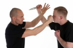 Self Defense Plr Articles v3