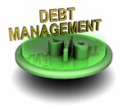 Debt Management Plr Articles v5
