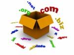 Domains Plr Articles