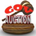 Government Auction Alert Plr Articles