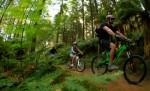 Biking Plr Articles v4
