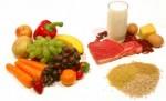 Sports Nutrition Plr Articles