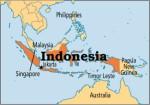 Indonesia Plr Articles