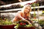 Horticulture Plr Articles