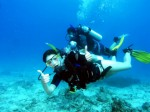 Scuba Diving Plr Articles v2