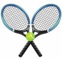 Tennis Plr Articles v2