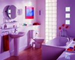 Bathroom Accessories Plr Articles