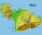 Maui Plr Articles