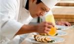 Culinary Arts Plr Articles