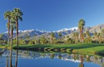 Palm Springs Plr Articles