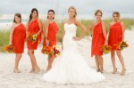 Planning Your Wedding Party Plr Articles