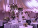 Planning Your Wedding Party Plr Articles v2