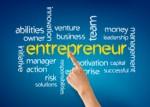 Entrepreneur Plr Articles v2