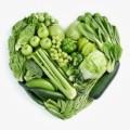 Vegeterian Plr Articles v2