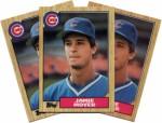 Baseball Cards Plr Articles