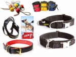 Dog Equipment Plr Articles
