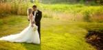 Wedding Plr Articles