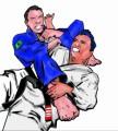 Jiu Jitsu Plr Articles