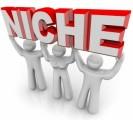 Niche Marketing Plr Articles