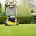 Lawn Care Plr Articles