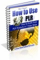 How To Use PLR Mrr Ebook