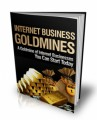 Internet Business Goldmines Mrr Ebook